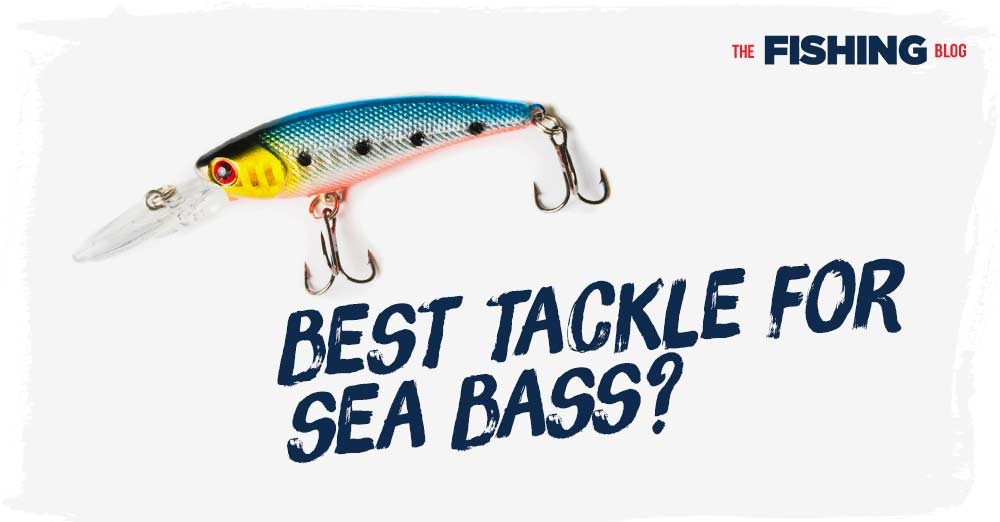 What-is-the-Best-Tackle-for-Bass-Fishing